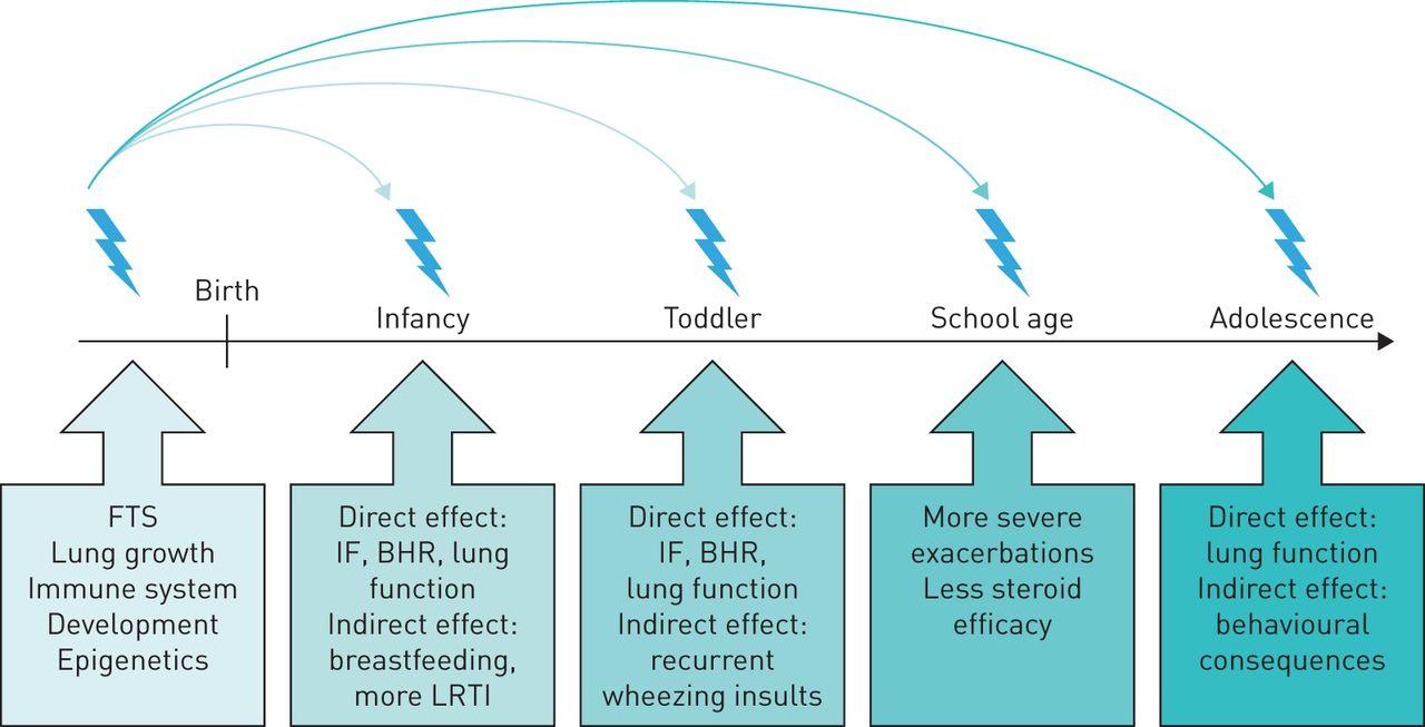 Smoking when breastfeeding. Harm of smoking during breastfeeding 55